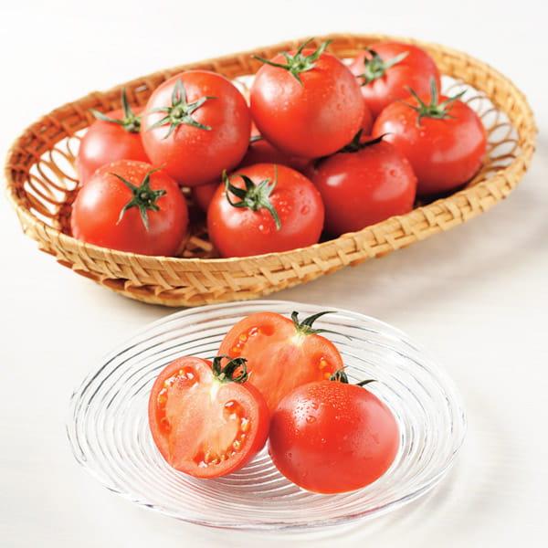 高知・おかざき農園 / 高知県春野産  プレミアムフルーツトマト ※1月上旬から2月末日お届け*