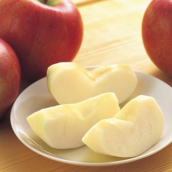 長野・入江フルーツ農場 / さんふじリンゴ※12月上旬から1月中旬お届け*