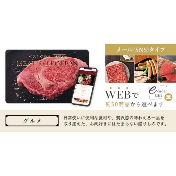 ベストグルメ~銘柄肉~ MEAT SELECTION メールカタログ <MS08>