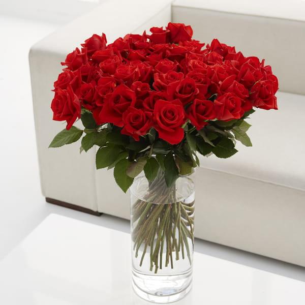 Red Rose 20 バラの花束20本