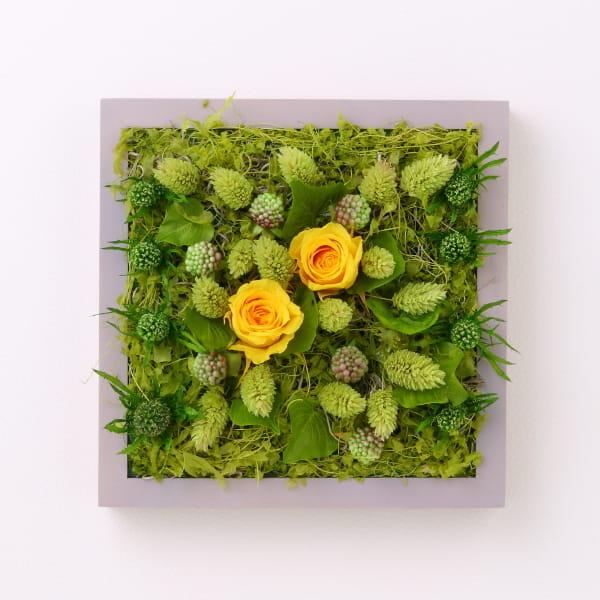 Grart プリザーブドグリーンアート <Garden WILD ROSE>