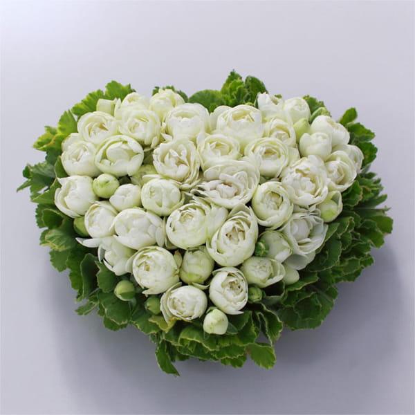 kusakanmuri / Gateau de Rose(ガトー・ドゥ・ローズ) バラのケーキ