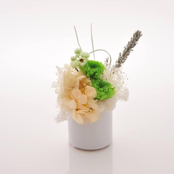 antina×アトリエみちくさ / プリザーブドフラワーお供花グリーン系(S)