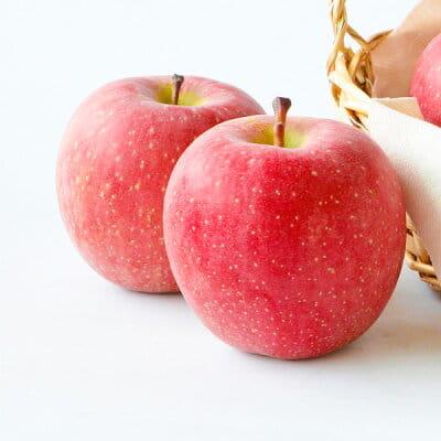 長野県産 りんご サンふじ (2.5kg) ※11月中旬から12月下旬お届け*