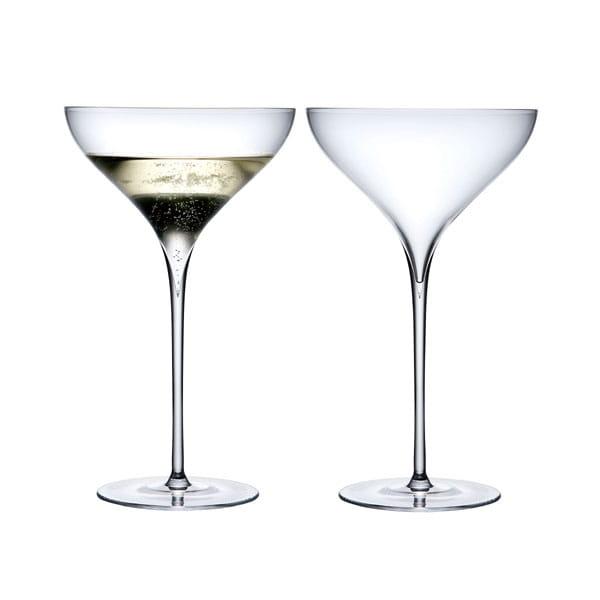 LSA / SAVOY シャンパングラスセット