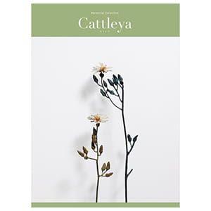 選べるギフト メモリアルセレクション <Cattleya(カトレア)>