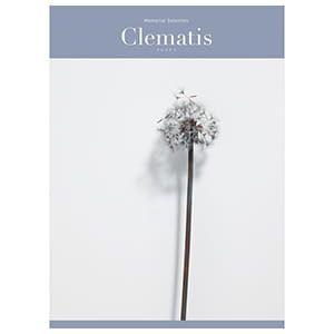 選べるギフト メモリアルセレクション <Clematis(クレマチス)>