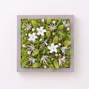 Grart / プリザーブドグリーンアート Garden JASMIN