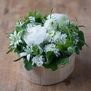 kusakanmuri / Souche Fleurie(スーシュ・フリュリ) ホワイト×グリーン
